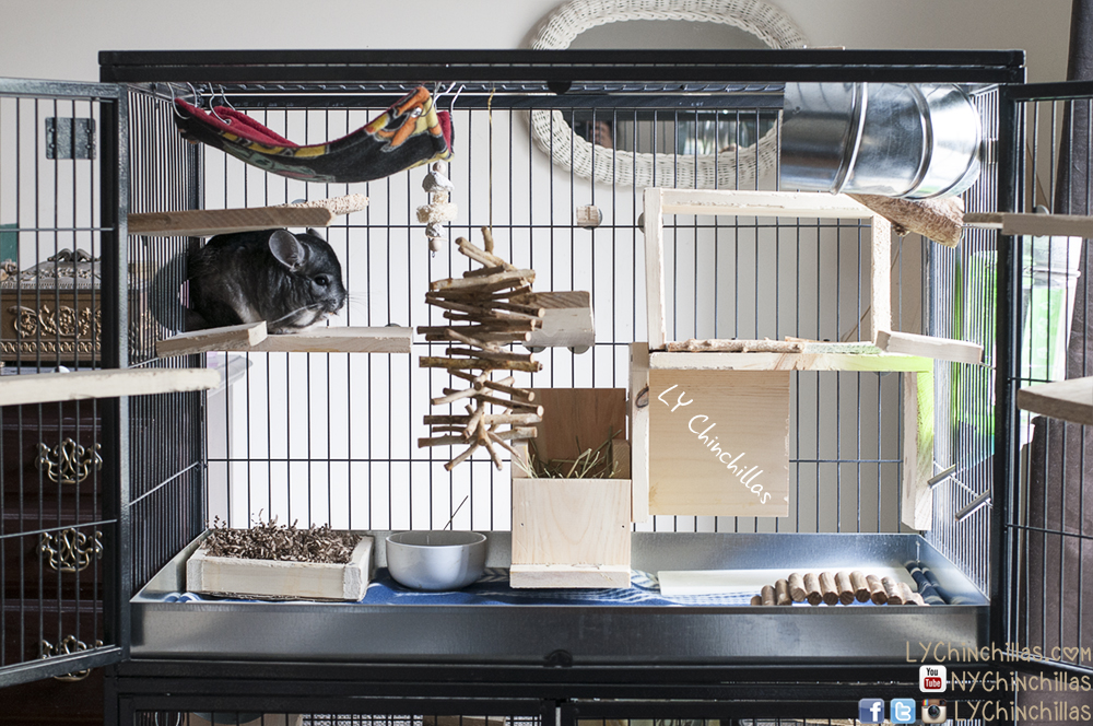 Ferret Nation Cages: Pros And Cons