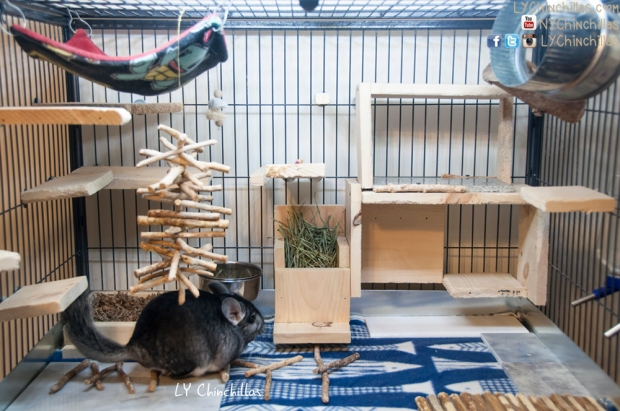Mitty Clean Cage