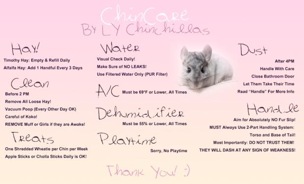 Chin Care